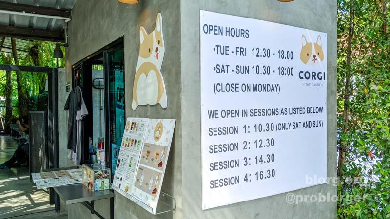Bangkok Corgi Cafe